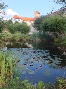 Schloss Breitungen Teich